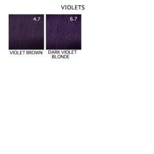 Mood Color Range Violet
